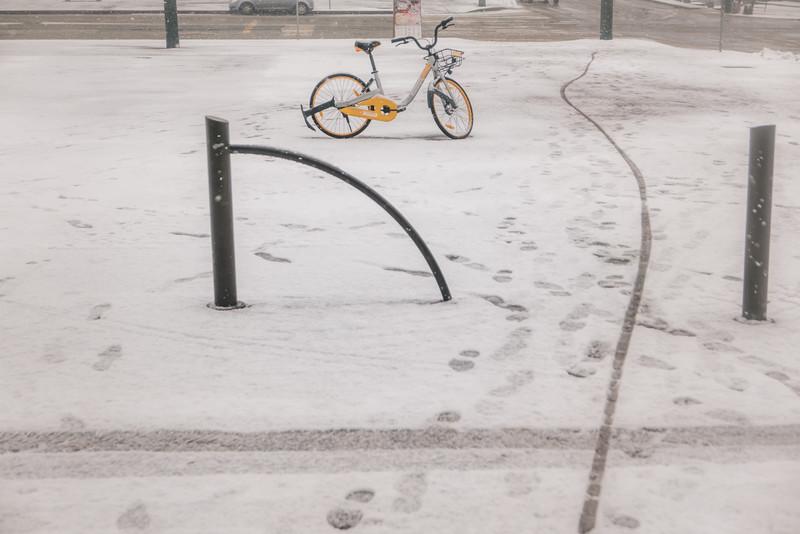 La bici nella neve