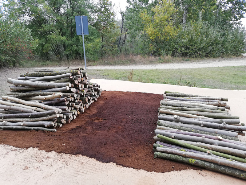 Le pile di tronchi